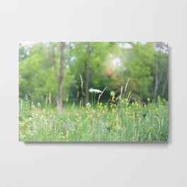 Wildflowers and the Woodland Metal Print