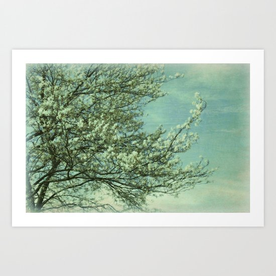 Blossom Dream Art Print