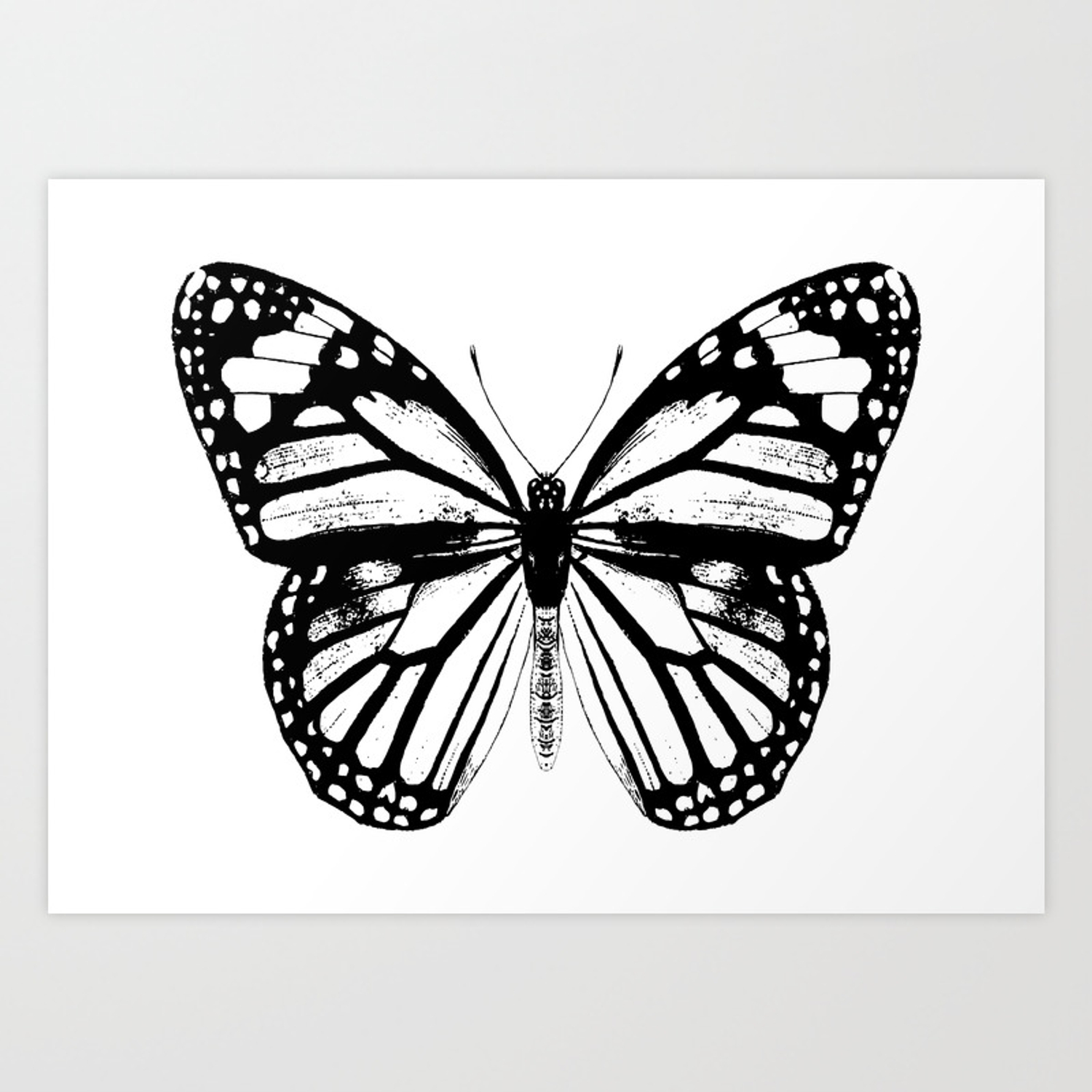 Monarch butterfly vintage butterfly black and white art print