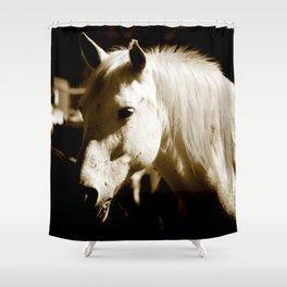 White Horse-Sepia Shower Curtain