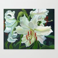 casablanca Canvas Prints featuring Casablanca Lillies by Ellen Sullivan Farley