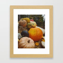 The magic of Pumpkins Framed Art Print