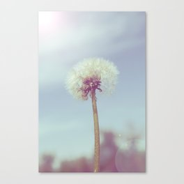 Fine and Dandy Canvas Print