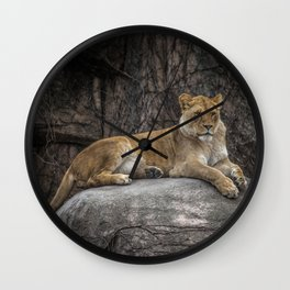 Lioness On Her Rock Lincoln Park Zoo Chicago Wall Clock