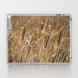 Wetlands Marsh in the Spring Laptop & iPad Skin