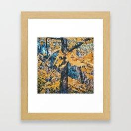 Trees' last song  Framed Art Print