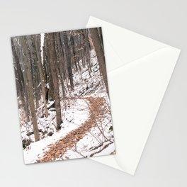 Snowy Path Stationery Cards