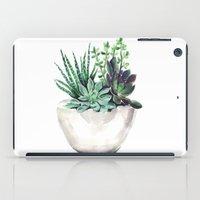 succulents iPad Cases featuring Succulents by Bridget Davidson