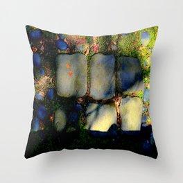 Spillover - Who Knows When... Throw Pillow