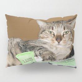 Catnip Party Pillow Sham