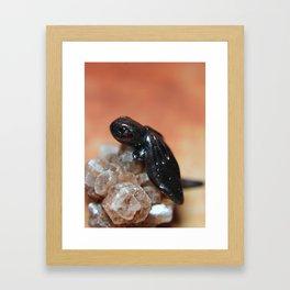 Bronze Dragon on Smokey Quartz Framed Art Print