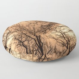 Naked trees and cloudy sunset sky Floor Pillow