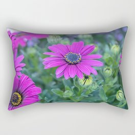 pink  daisy in bloom in spring Rectangular Pillow