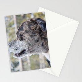 Albert Stationery Cards