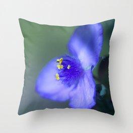Wildflower Blue Spiderwort Throw Pillow