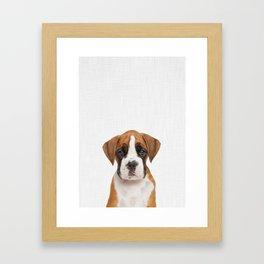 German Boxer Puppy Framed Art Print