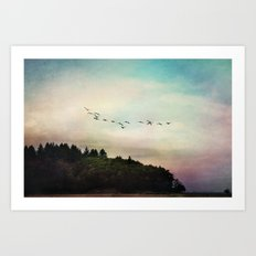 flight pattern Art Print