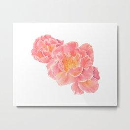 Three pink roses Metal Print