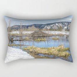 Nice Digs Rectangular Pillow