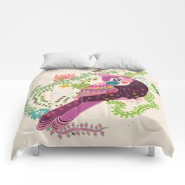 A Timid Jay Comforters