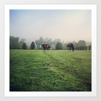 Horses in the Field Art Print