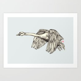 Flying Swan Art Print