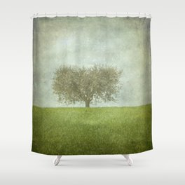 The Lone Olive Tree Shower Curtain
