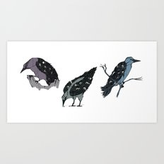 The Crows Art Print