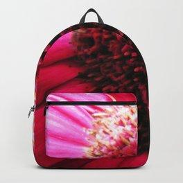 Pink Gerber Daisy Macro Backpack