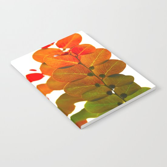 Light through leaves Notebook