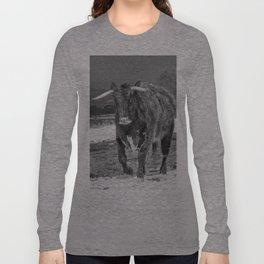 English Longhorn Black And White Long Sleeve T-shirt