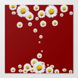 WHITE CASCADING DAISIES ON BURGUNDY Canvas Print