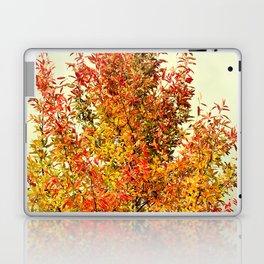 FALL COLOR LEAVES Laptop & iPad Skin