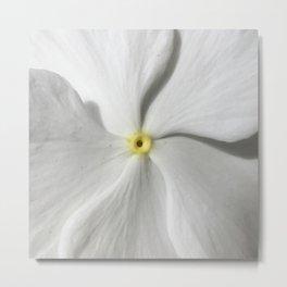 White Petal Metal Print
