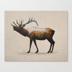 The Rocky Mountain Elk Canvas Print