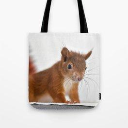 Very Cute Squirrel Tote Bag