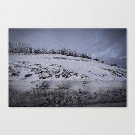 Mount Hotham Canvas Print