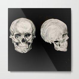 Human Skulls Metal Print