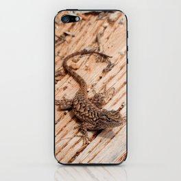Plateau Fence Lizard, Utah iPhone Skin