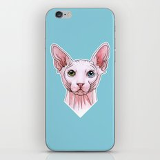 Sphynx cat portrait iPhone & iPod Skin