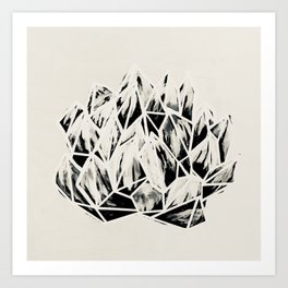 Haworthia Succulent Black-White Print Art Print