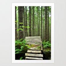 Bike Trail, BC Art Print