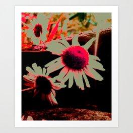 Doom Daisy's Art Print