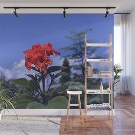 Geiger Tree - Cordia sebestena Wall Mural