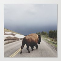 mouse Canvas Prints featuring Street Walker by Kevin Russ