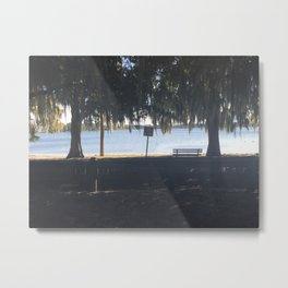 Lake Virginia Metal Print