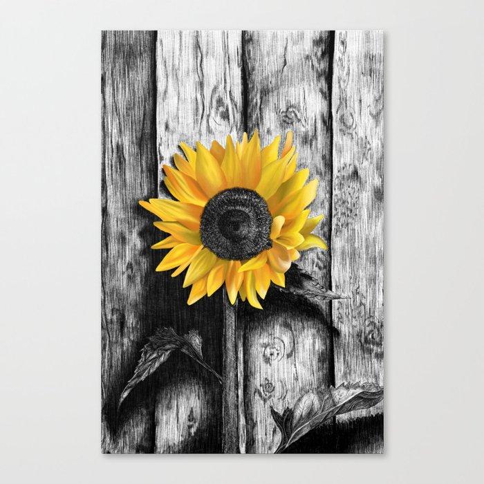 Sunflower Leinwanddruck