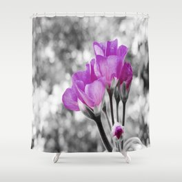 Fuchsia fLOWERS Pop Of Color Shower Curtain