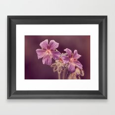 at the side of the road Framed Art Print