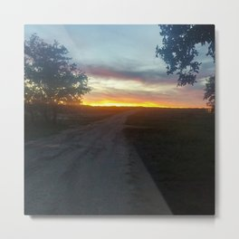 texas farm road  Metal Print